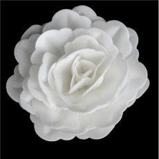 Ostyavirág - Rózsa, fehér