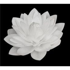 Ostyavirág - Dália, fehér