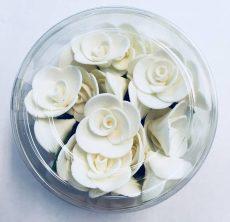 Mini rózsa fehér